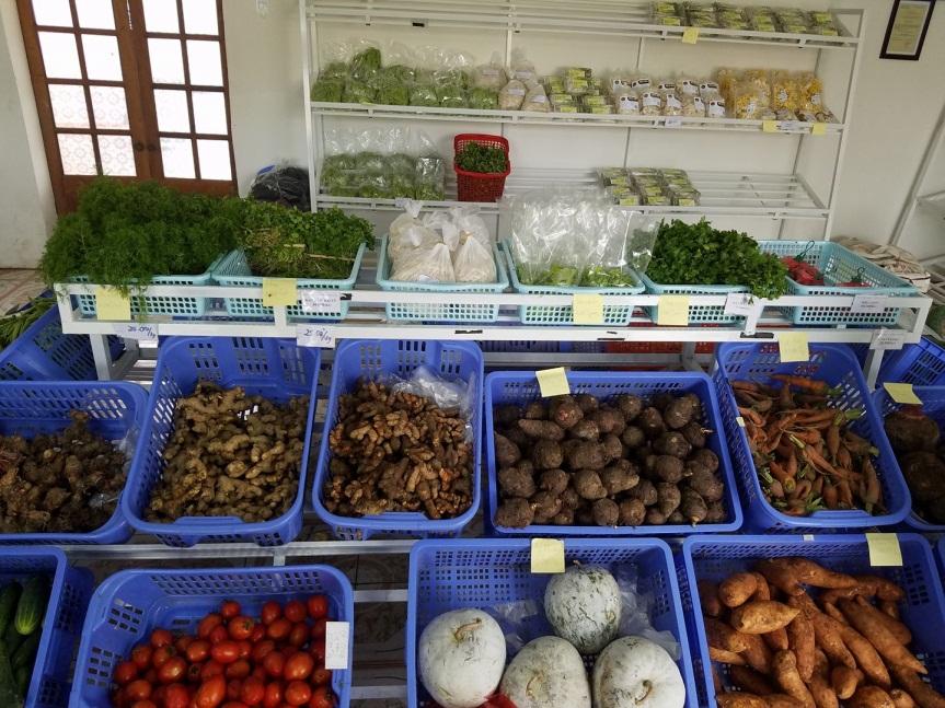 thực phẩm sạch An Nguyên_giaoducnghe