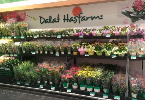 dalatfarm_giaoducnghe